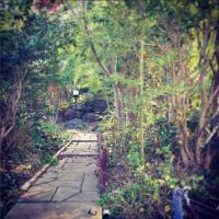 紅葉の頃の庭