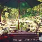 ガーデンでランチ